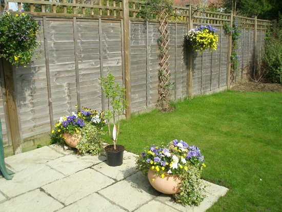 Fence with hanging baskets